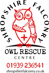 OWL RESCUE BANNER
