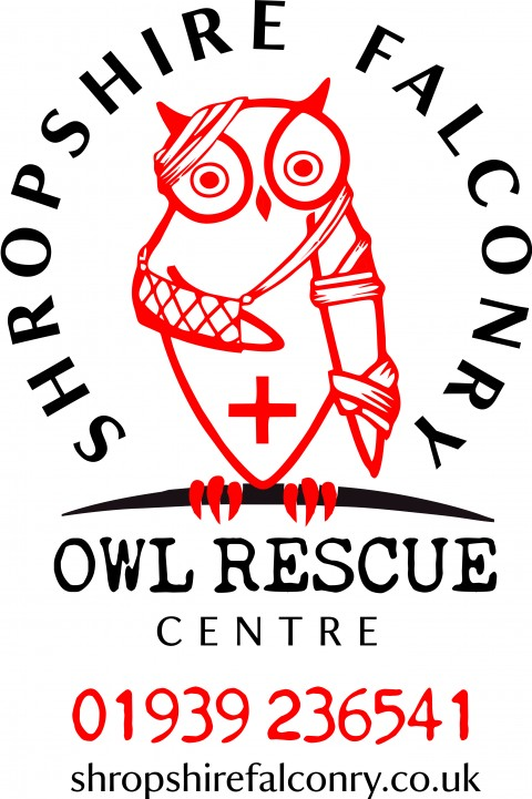 Owl Rescue Centre for 2017