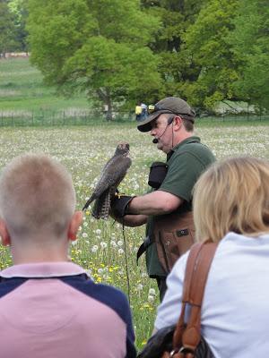 Hawkstone Park Fur & Feather