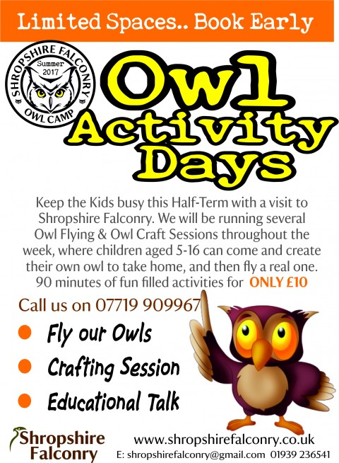 Owl Events for Half Term